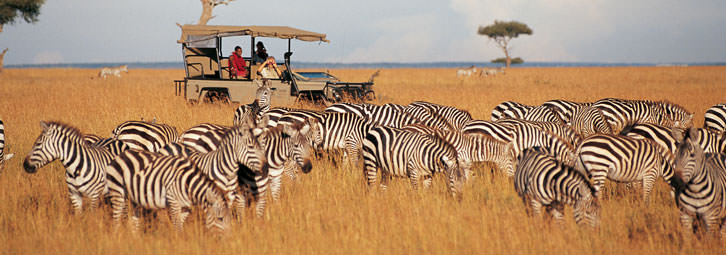 kenya-safari-6